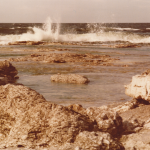 mitt första foto 1980